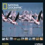 national geographic calendar