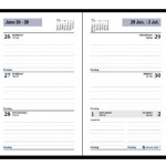 dayminder-weekly-planner