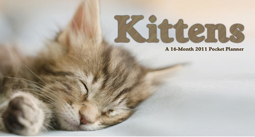 Cute Kitten and Cats Planners and Calendars