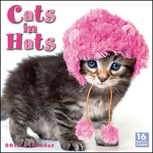 Funny cats calendars 2017